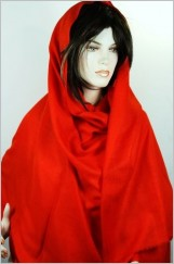 Authentique pure Pashmina4