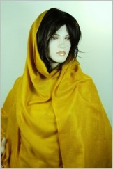 Authentique pure Pashmina5