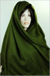 Authentique pure Pashmina7